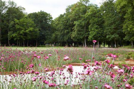 jparc jardins d ancy le franc chateau bourgogne visite