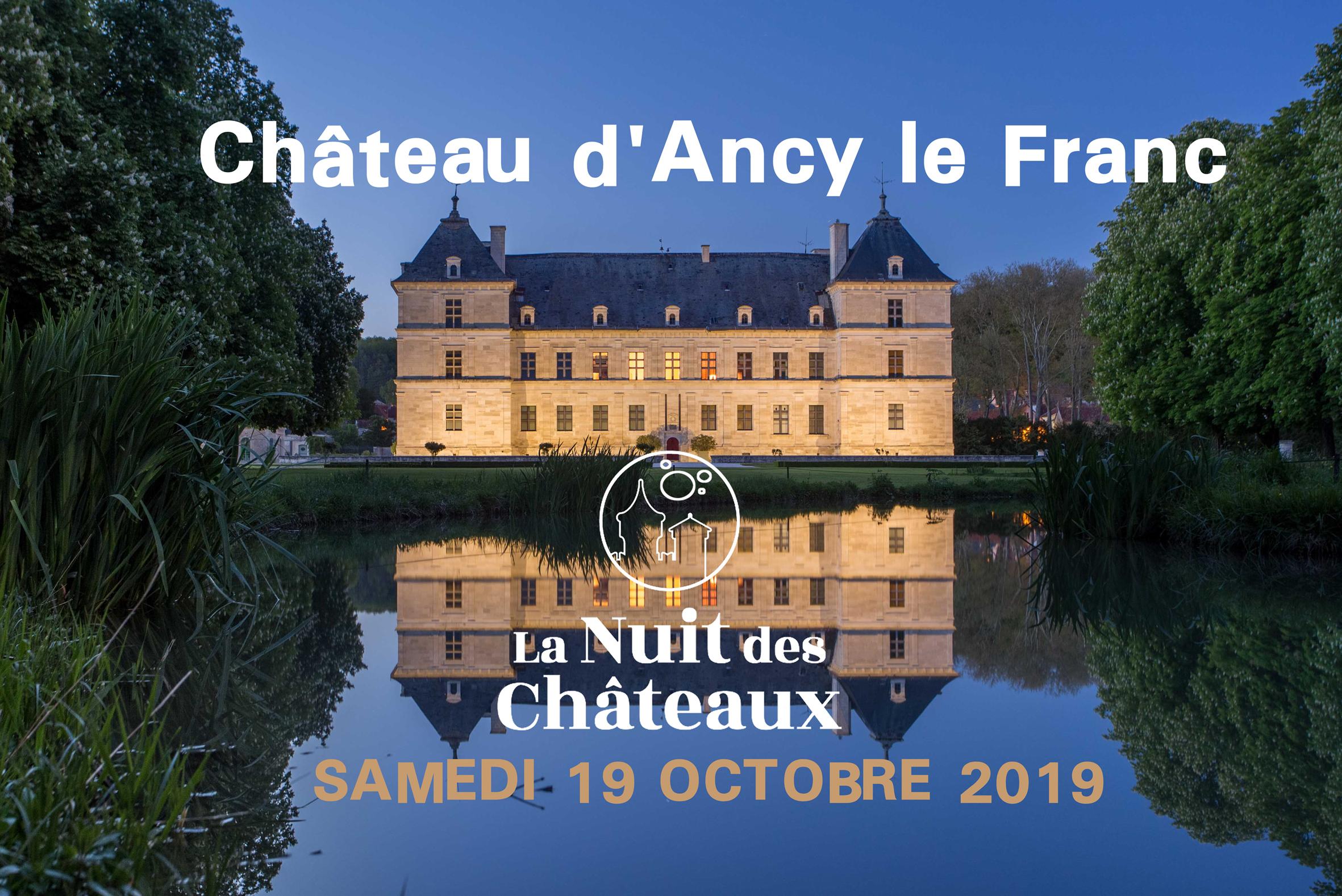La nuit des châteaux au château d'Ancy le Franc